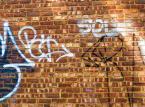 Grzywna dla właściciela nieruchomości za nieskoszony trawnik i graffiti na ścianie