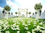 Ślub w plenerze możliwy, ale niepewny