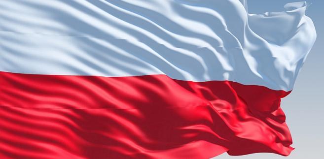 Senat sprawował pieczę nad Polonią od 1989 r., ale w 2012 r. pieniądze z budżetu na współpracę z Polakami za granicą przekazano Ministerstwu Spraw Zagranicznych.
