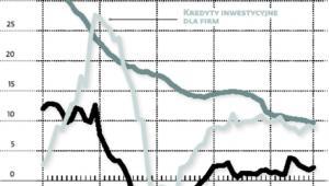 Roczna zmiana wartości kredytów