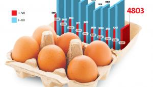 – Zgodnie z prowadzoną w Polsce urzędową kontrolą pasz tylko w 1–2 proc. przebadanych próbek stwierdzono patogeny salmonelli – podkreśla Dariusz Mamiński z biura prasowego resortu.