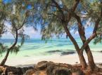 """<strong>Mauritius </strong><br>Na Mauritiusie, podobnie jak w przypadku wszystkich innych wysp na Oceanie Indyjskim, pory roku są odwrócone w porównaniu do półkuli północnej. Święta Bożego Narodzenia obchodzone są więc w słońcu! A od świąt aż do Środy Popielcowej mamy okazję podziwiać tutejszą, łagodną formę karnawału. <br><br>– Styczeń i luty na Mauritiusie są miesiącami celebracji. Sega, narodowy taniec wywodzący się z tańców afrykańskich niewolników jest wówczas obecny niemal wszędzie. Improwizowane występy odbywają się także na publicznych plażach – tradycyjne wykonanie, boso przy ognisku na plaży, gdzie kobiety w falujących spódnicach i bluzkach, przesuwają się wokół mężczyzn, na głos bębnów niesie się wysoko – to coś, co z pewnością zapamiętamy z wyjazdu – mówi przedstawiciel Rainbow. <br> <br>Egzotyczne święto to ciekawa atrakcja, ale nie musicie obawiać się, że zakłóci wypoczynek. Na wyspie  jest mnóstwo spokojnych zakątków, w których będziecie chłonąć piękne widoki i relaksować się w słońcu. Widoki znajdziecie je chociażby w Parku Narodowym Black River Gorges, na Ziemi Chamarel zwanej ,,Ziemią Siedmiu Kolorów"""" czy Tamarind Falls. <br><br>Nie zapominajmy jednak, że Mauritius to jedna z najpiękniejszych linii brzegowych na świecie! Tutejsza plaża Trou-aux została, okrzyknięta Najlepszą Plażą Świata w plebiscycie World Travel Awards, ale inne plaże wyspy również są zachwycające. Drobny, biały piasek ciągnący się przez kilometry wybrzeża, z jednej strony egzotyczna roślinność, z drugiej niezwykły błękit oceanu i rafa koralowa stwarzająca idealne warunki do nurkowania i snorkellingu – to miejsce odbiera mowę. <br>"""