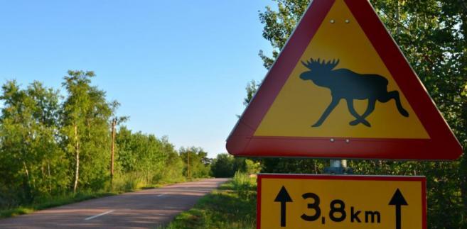 Znak ostrzegający kierowców