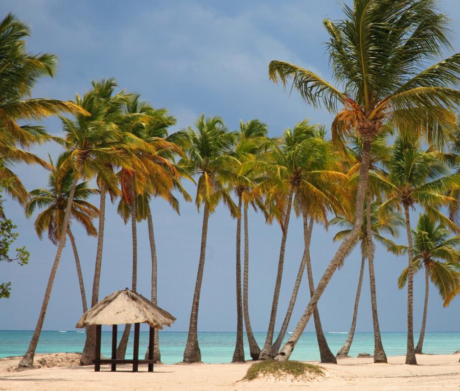 Punta Cana to najdalej na wschód wysunięty przylądek Dominikany. Znany z plaż o białym piasku popularny region turystyczny.
