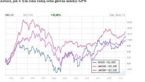 Zobacz, jak w tym roku radzą sobie główne indeksy GPW