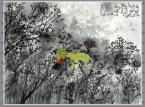 """John Lurie National Orchestra """"Invention of Animals"""" - recenzja"""