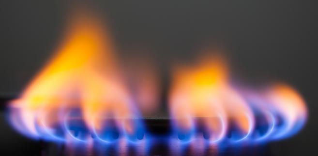 To pierwsze połączenie gazowe między Polską a krajami bałtyckimi, które w Unii nazywane są wyspą energetyczną