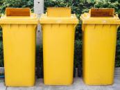 Śmieci, odpady, opłaty i kary. Sprawdź, jak dobrze znasz przepisy [QUIZ]