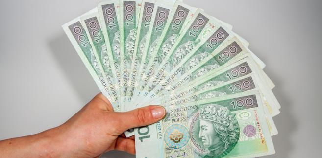 pieniądze, złoty, złotówka, pensja