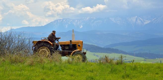 Kasa Rolniczego Ubezpieczenia Społecznego obsługuje ubezpieczenia emerytalne rolników
