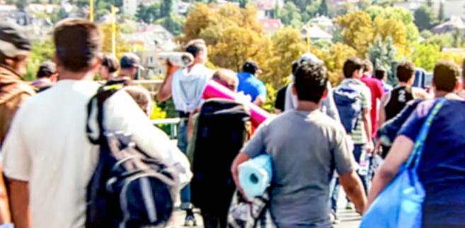 Jego zasady przewidują badanie statusu migracyjnego wyłącznie tych osób, które wchodzą w skład gospodarstw domowych, co oznacza pominięcie ludzi mieszkających w kwaterach zbiorowych. Według oficjalnego Centralnego Rejestru Cudzoziemców (AZR), w końcu 2017 roku przebywało w Niemczech 10,6 mln obcokrajowców, natomiast Destatis ujął w swych zestawieniach tylko 9,4 mln z nich.