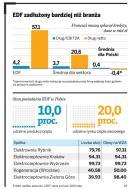Niepewne inwestycje Enei