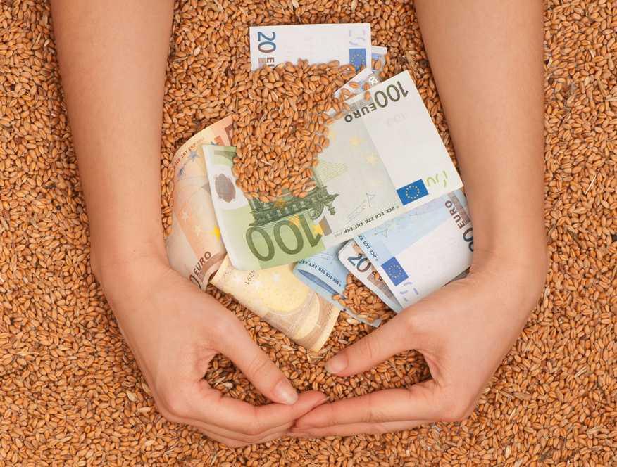 Pieniądze i rolnictwo